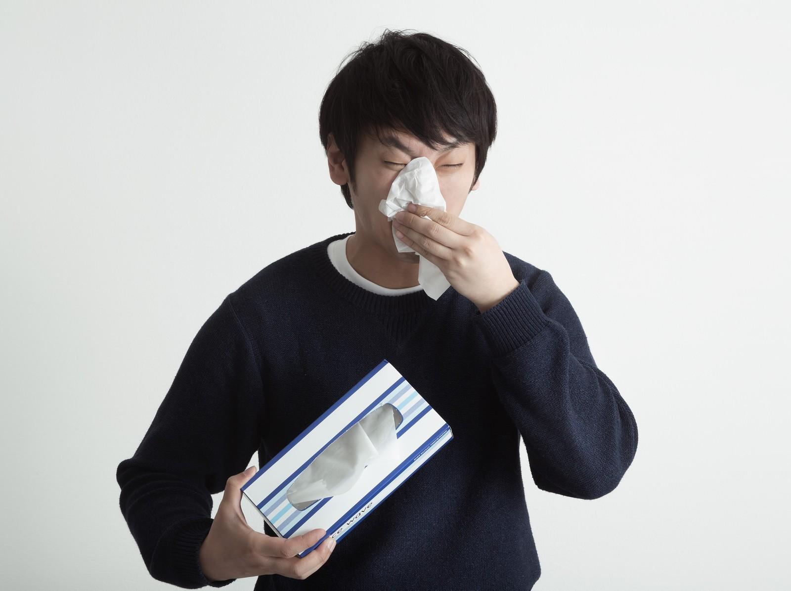 スギ花粉症 アレルギー性鼻炎 秋の花粉症 ブタクサ ヨモギ