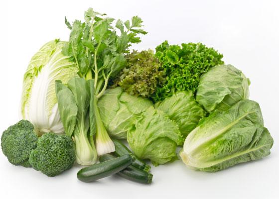 炭水化物抜きダイエット 肥満 食物繊維