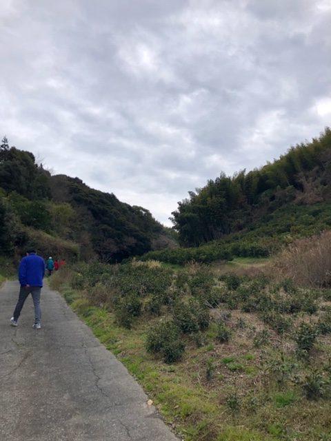 イオン 遠足に来た 特権 三保の松原