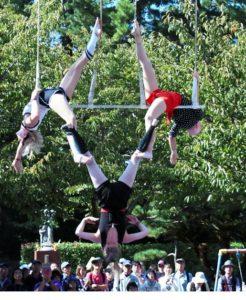 大道芸ワールドカップin静岡2020 史上初の中止決定 新型コロナの影響
