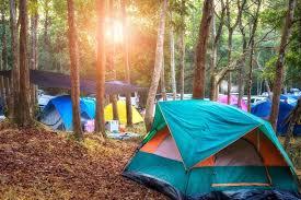 ソーシャルディスタンス キャンプ ヒロシ 山を買う 山はいくらかかる?